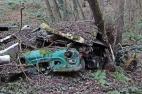 car-plantation16