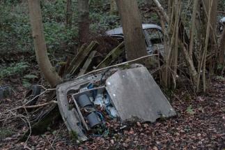 car-plantation21
