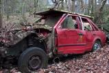 car-plantation27