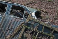 car-plantation52