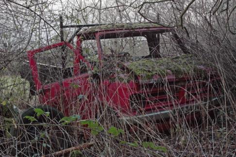 car-plantation58