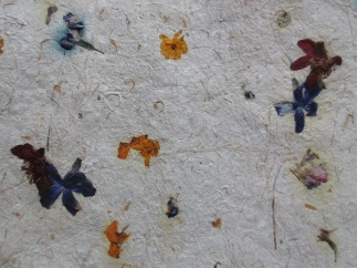 Some of the paper we made with plant fibres, scrap paper and flowers